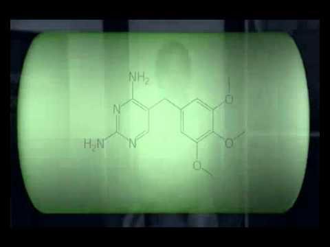 Trimetoprim - Sulfametoxazol y Nitrofuratoína