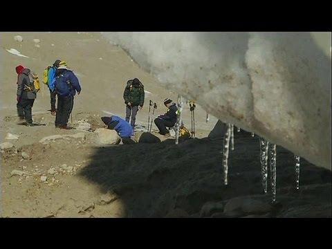 Περού: Απολιθώματα φυτών αποκαλύπτονται από το λιώσιμο των πάγων – science