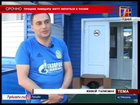 2017.05.18. Канал 7+ о  спасённой собаке и доброте Андраника Бабаяна