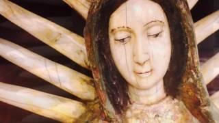 Estofado de la Virgen de Guadalupe