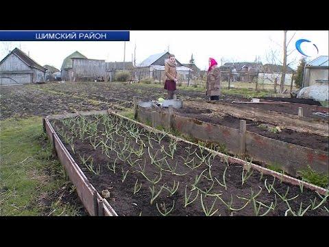 Огородников Шимска волнует вопрос с оплатой полива участков