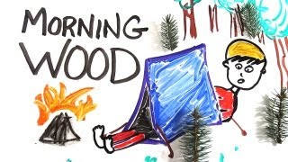 Download Youtube: The Science of 'Morning Wood'