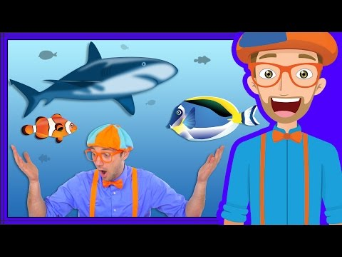 At an Aquarium with Blippi | Fish for Kids_Aquarium. Best of all time