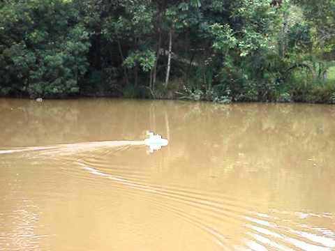 Barco RC de isopor em Taquaracu de Minas