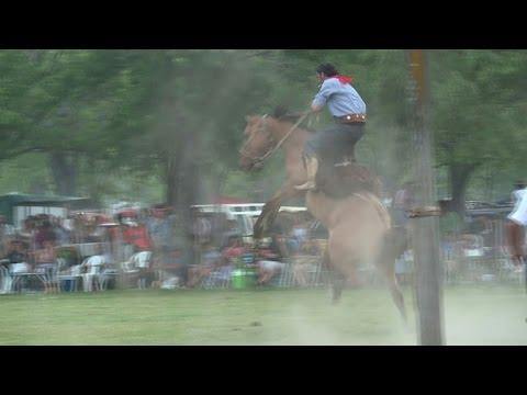 Argentina's gauchos keep 'cowboy' traditions alive