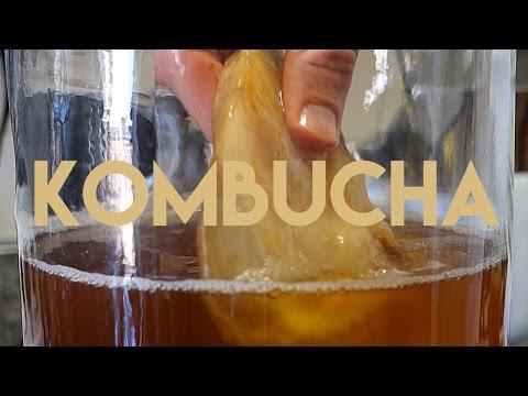 , title : 'Beginners Guide To Fermentation: Kombucha Making'