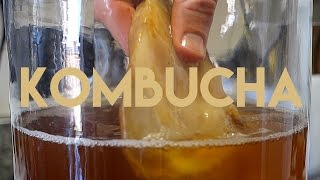 Beginners Guide To Fermentation: Kombucha Making by Brothers Green Eats