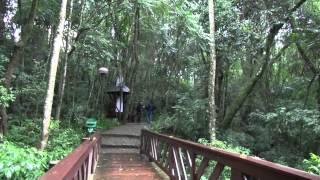 Parques e Bosques de Curitiba