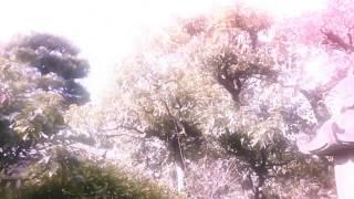 """西中島きなこ """"ambivalent"""" (Official Music Video)"""