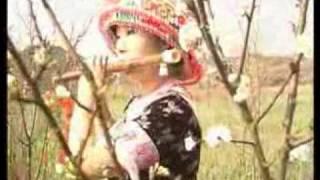 Hmoob Suav Tshuab Raj 苗民歌曲 Music Video
