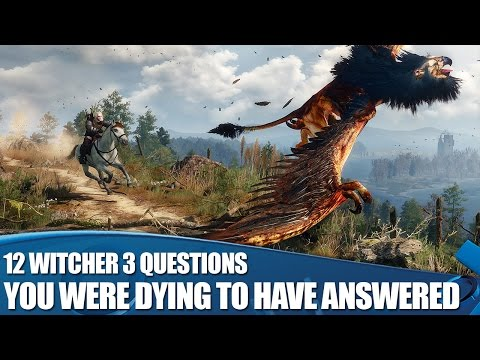 access - The Witcher 3: Wild Hunt has almost arrived for PS4, and we've taken YOUR questions to developer CD Project RED. Here's what they had to say about the beautiful RPG... PlayStation Access TV...