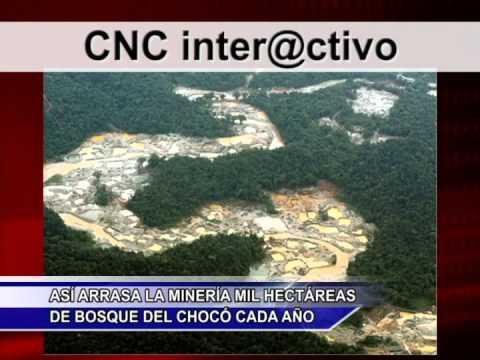 Noticias CNC Chocó Marzo 27 De 2014