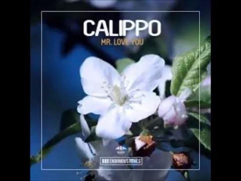 Calippo - Mr  Love You (Original Mix)