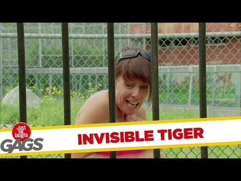 Scary Invisible Tiger Prank
