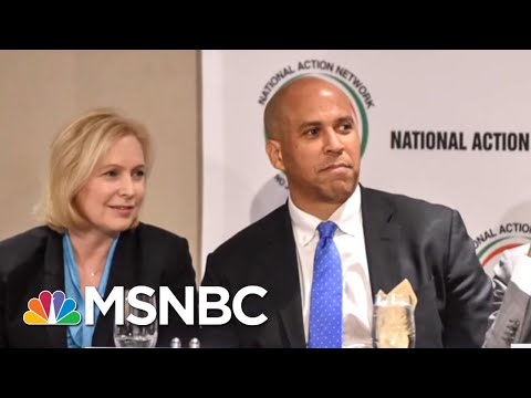 Who Are The Top 2020 Democratic Contenders?   AM Joy   MSNBC