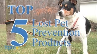 2016 Top 5 Products to Help Prevent your Dog from Becoming Lost