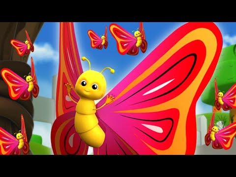 Schmetterlings lied auf Deutsch | Schmetterling, du kleines Ding | Kinderreime | Butterfly Song