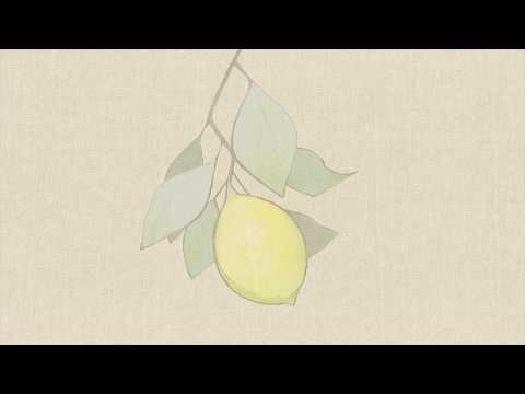 , title : '米津玄師/Lemon  Cover【アダチケンゴ】'