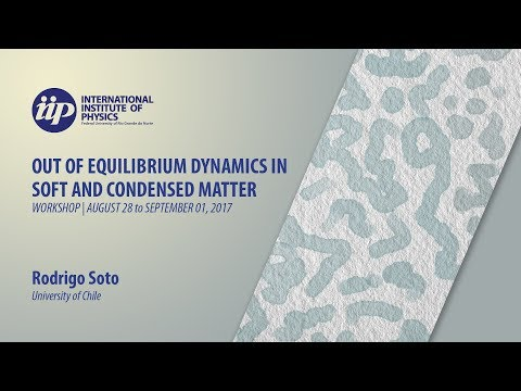 Revisiting the run-and-tumble dynamics of bacteria - Rodrigo Soto