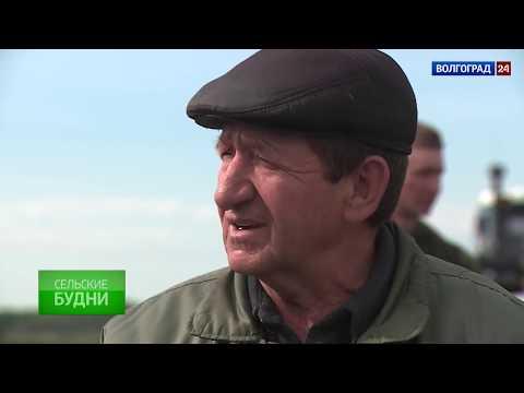 Калиновское сельское поселение. Выпуск от 18.05.2017