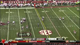 Cedric Ogbuehi vs Arkansas (2013)