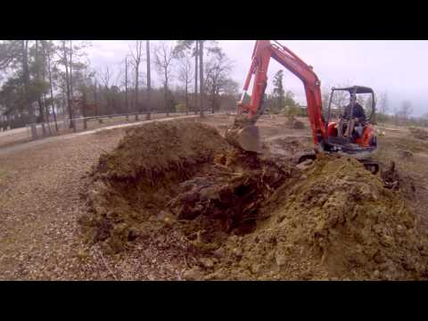 Digging out a Pine Stump