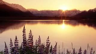 CCB Hino 186 : Cristo, Luz Do Mundo Hinario 5 Novo Hinario