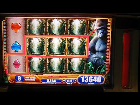 Queen of the Wild BIG WIN – Slot Machine Bonus Round Free Games – Gorillas in the Mist 2!
