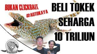 Video BELI TOKEK SEHARGA 10 TRILIUN MP3, 3GP, MP4, WEBM, AVI, FLV Februari 2019
