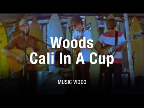 Woods - SUBSCRIBE to Pitchfork.tv: http://bit.ly/MgXoZp MORE Music Videos: http://bit.ly/J27abt Woods offer up their best late-1960s West Coast vibes in the new Adar...