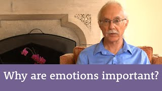Why emotions are important