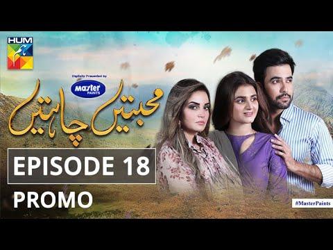 Mohabbatain Chahatain | Episode 18 | Promo | Digitally Presented By Master Paints | HUM TV | Drama