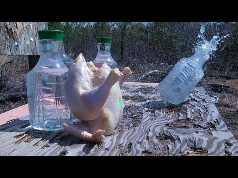RangeTalk #26 - Hornady NTX 15.5gr .17hmr + Chicken (видео)