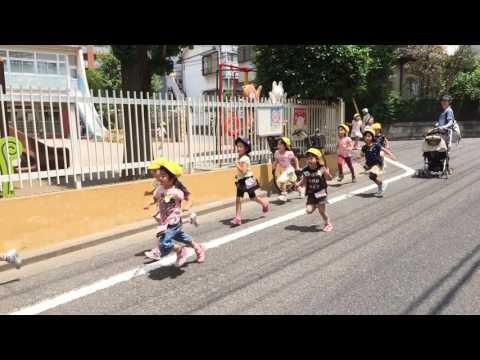 成増すみれ幼稚園 年長 マラソン練習