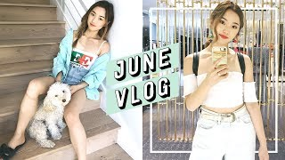 June is in full bloom and I've documented everything along the way. In this vlog, I partner with Daniel Wellington (http://www.danielwellington.com) to show you their new Bondi collection. Get 15% off online using JENN15. I also travel to Tokyo and show you our new home. ------------------------------------------💎 Subscribe and become a Jem today: http://bit.ly/2iLayjY 💎------------------------------------------➫  Instagram: http://instagram.com/imjennim➫ Twitter: http://twitter.com/imjennim➫ Facebook: http://facebook.com/imjennim➫ Spotify: http://bit.ly/2rctq05➫  Snapchat: http://snapchat.com/add/jennimsnaps------------------------------------------➫ Graphics + Illustrations by Dawn Lee: http://bit.ly/2a0wWpA➫ Video edited by Jenn Im------------------------------------------❐ MUSIC ❏➫ DJ Grumble's Soundcloud: http://bit.ly/1ElnUag➫ DJ Grumble's Spotify: http://spoti.fi/2s5bRD7------------------------------------------FTC: This video is sponsored by Daniel Wellington.