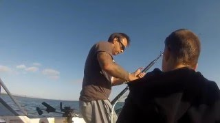 Augusta Australia  City pictures : 18kg king fish on downrigger Port Augusta South Australia