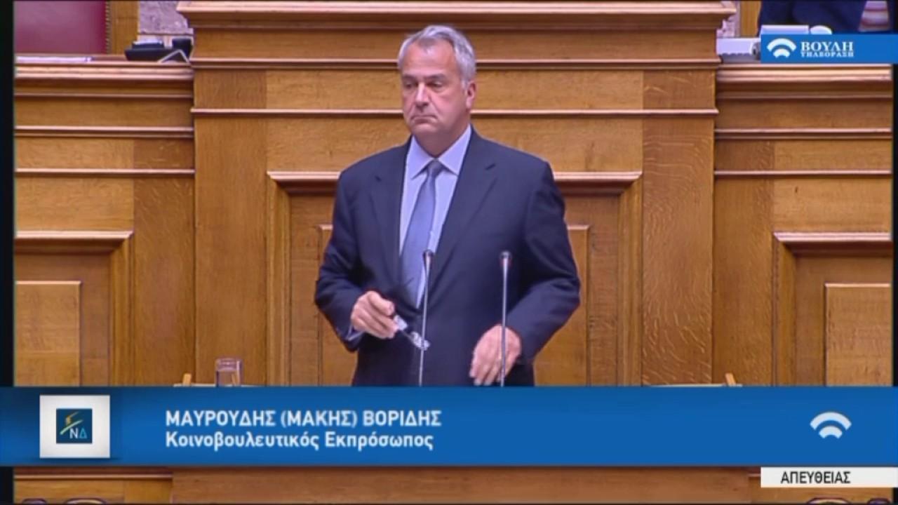 Μ.Βορίδης (Κοινοβουλ.Εκπρόσωπος ΝΔ)(Μέτρα εφαρμογής δημοσιον. στόχων και μεταρρυθμ.)(18/05/2017)