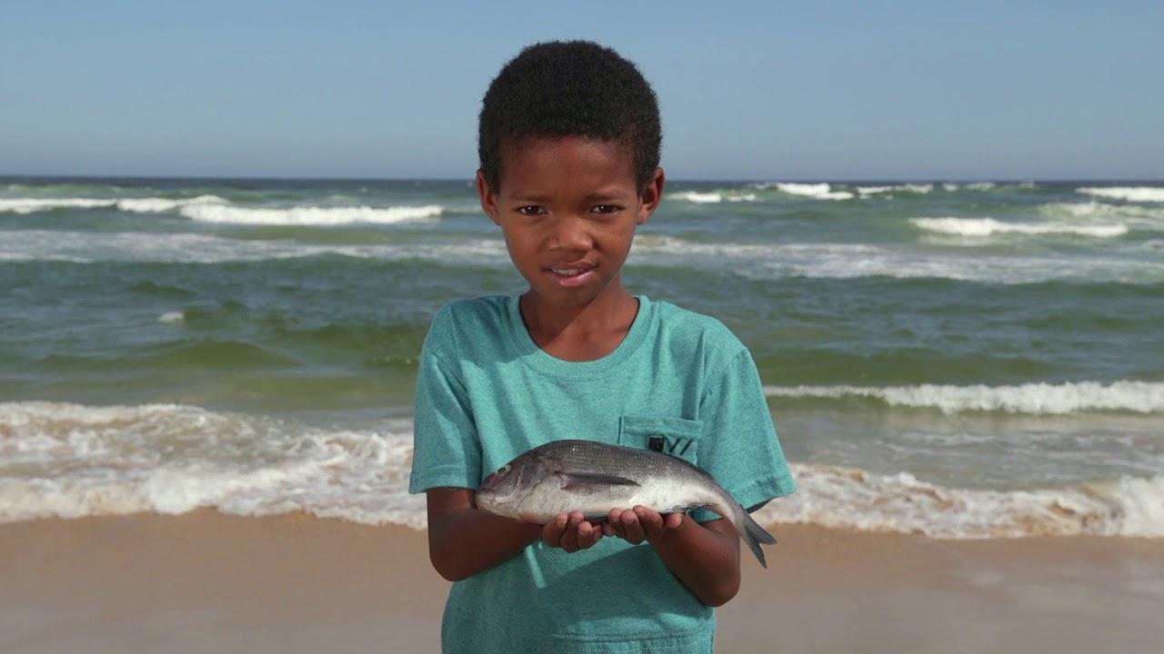 Όταν απειλούνται τα ψάρια, απειλούνται και οι άνθρωποι
