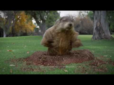 Farmers Insurance Commercial (2016) (Television Commercial)