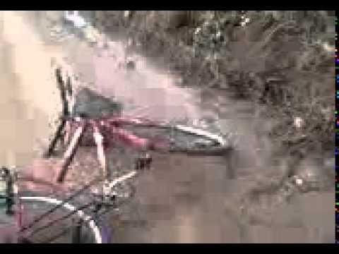 Briga de compadres em Arauá