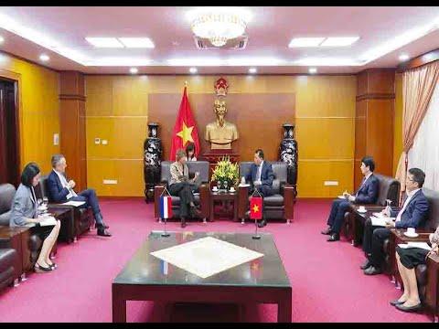 Việt Nam - Hà Lan: Hợp tác trong lĩnh vực thương mại, năng lượng