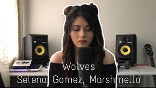 Video Wolves - Selena Gomez, Marshmello (Cover) MP3, 3GP, MP4, WEBM, AVI, FLV Januari 2018