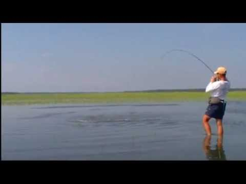 Red Hot Wade Fishing Action for Redfish – Beaufort, SC