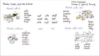 Plural endings, Noun Phrases