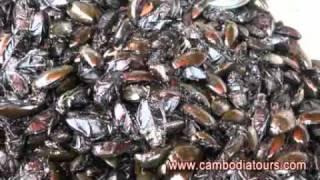 Cambodia 's Treat
