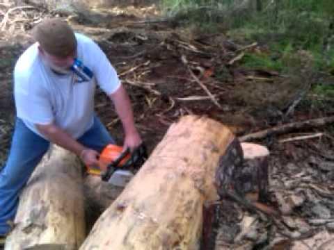 bud light chainsaw man