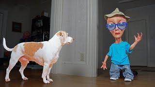Dog vs Alien in Disguise Prank: Funny Dogs Maymo, Penny & Potpie