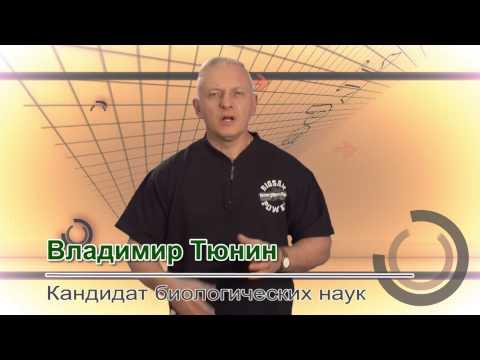 Занятия в тренажёрном зале против гипертонии