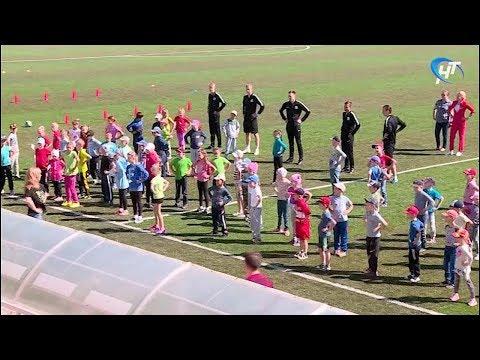 На стадионе «Электрон» прошел большой спортивный праздник, посвященный Дню защиты детей