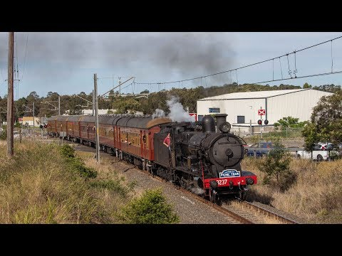 Australian Steam: Wollongong Steam Weekend with 3237